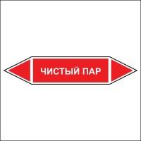 Знак безопасности «Чистый пар - двусторонние направление»